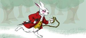 680-white-rabbit